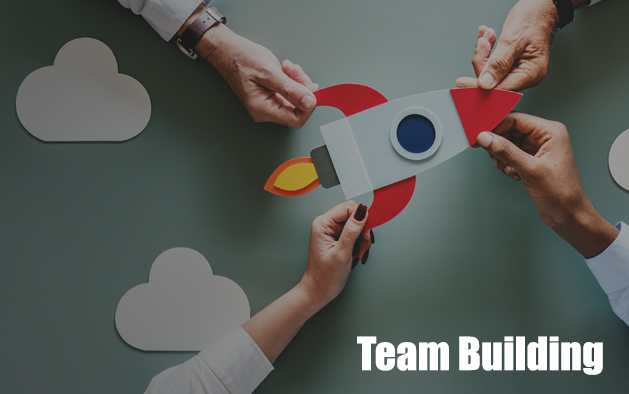 Why is team building a necessity?